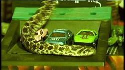 24-autocine_serpiente.jpg