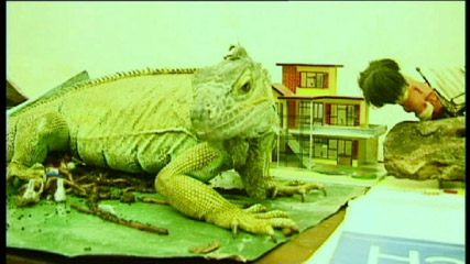 25-iguana_gitante.jpg