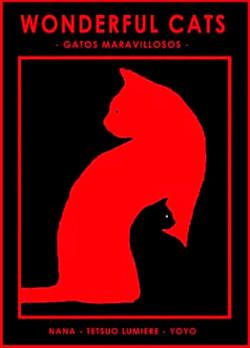 31-gatos