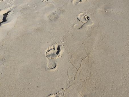 Deux petits pas sur le sable mouillé