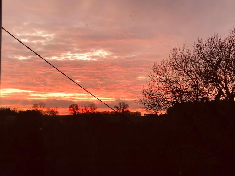 Pink sunset.
