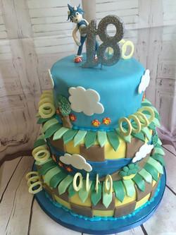 Road Runner Themed Cake