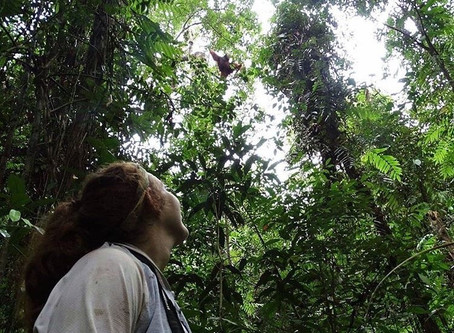 Friday Field Blog: Monkeying Around with Natasha Bartolotta