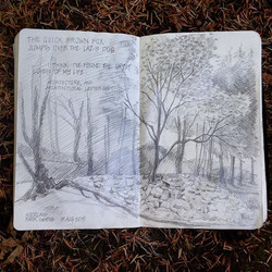 Killing time in the best way possible this afternoon #woodlandparkseattle #lifesketch