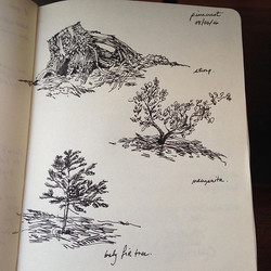 Little sketches from #pinecrestlake #stanislausriver