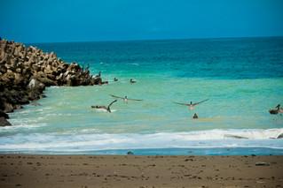 Capturing Costa Rica