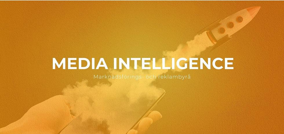 Media Intelligence Sweden.jpg
