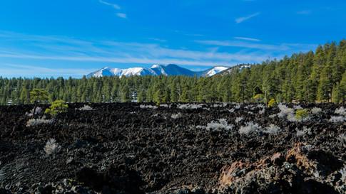 Tree Line Volcanic Basic drone photography
