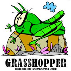 grasshopperbylorenzo