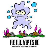 jellyfishbylorenzo