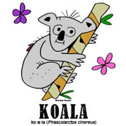 koalabylorenzo