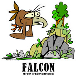 falconbylorenzo