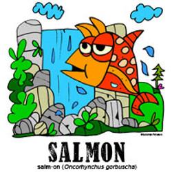 salmonbylorenzo