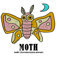 mothbylorenzo