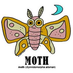 mothbylorenzo