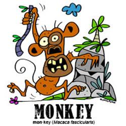 monkeybylorenzo