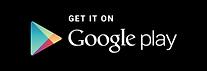 Google Download Image.png