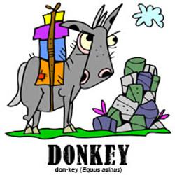 donkeybylorenzo
