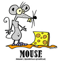 mousebylorenzo