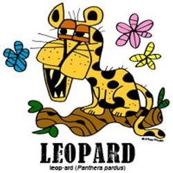 leopardbylorenzo