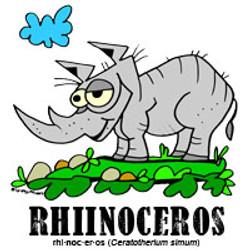 rhinocerosbylorenzo