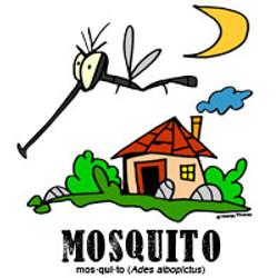 mosquitobylorenzo