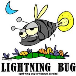 lightningbugbylorenzo