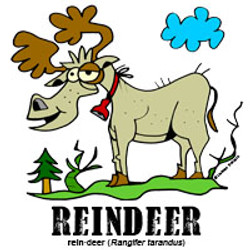 reindeerbylorenzo