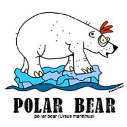 polarbearbylorenzo