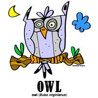 owlbylorenzo