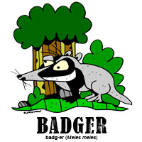 badgerbylorenzo