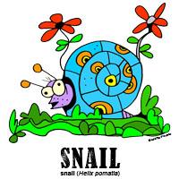 snailbylorenzo