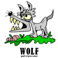 wolfbylorenzo