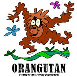 orangutanbylorenzo