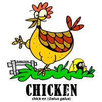 chickenbylorenzo