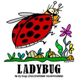 ladybugbylorenzo