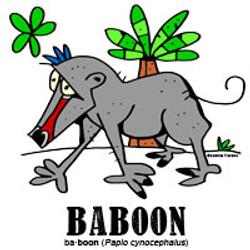 baboonbylorenzo
