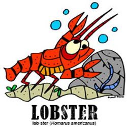 lobsterbylorenzo