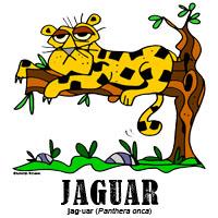 jaguarbylorenzo