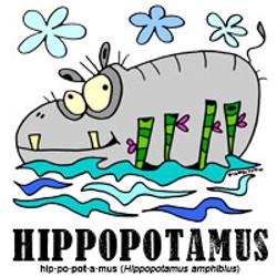 hippopotamusbylorenzo