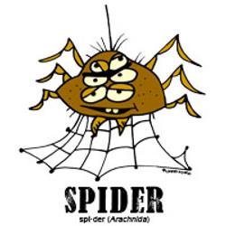 spiderbylorenzo