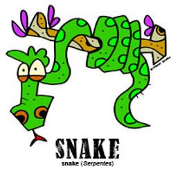 snakebylorenzo