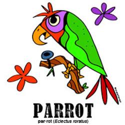 parrotbylorenzo