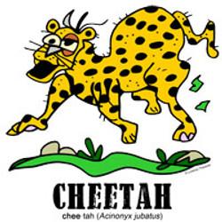cheetahbylorenzo