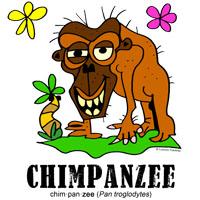 chimpanzeebylorenzo
