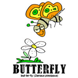 butterflybylorenzo