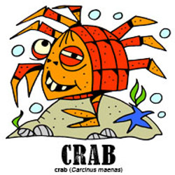 crabbylorenzo