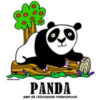 pandabylorenzo