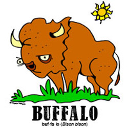 buffalobylorenzo