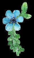Flower_03_karui.png